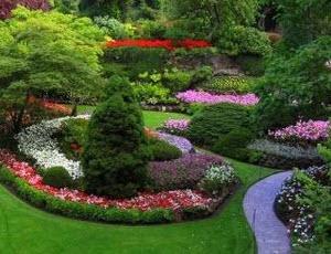 Australian Gardening